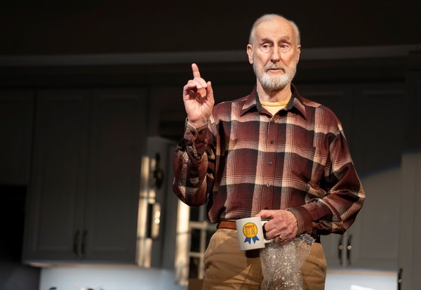 Photo Flash: First Look at Ben McKenzie, Ashley Park, James Cromwell and More in GRAND HORIZONS on Broadway